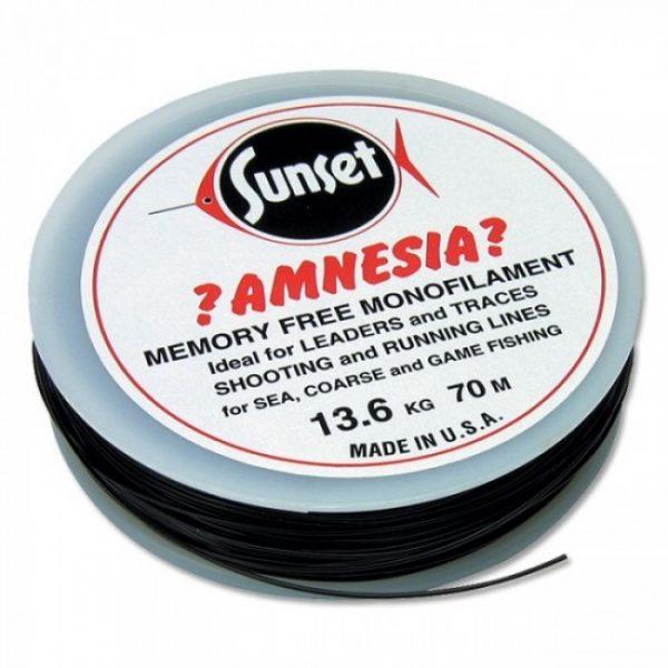 Amnesia monofilkament 12lb line 1