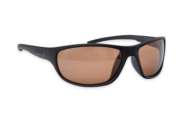 ESP Insight Glasses 1